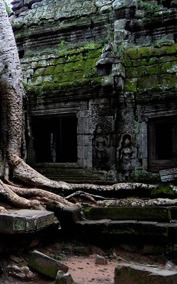 Ta Prohm - Buddhist temple in Siem Reap, Cambodia